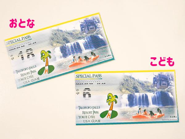 タロフォフォの滝公園チケット